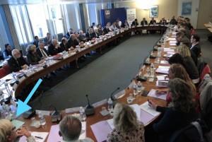 Réflexion ministérielle sur les enjeux et le statut de la sportive de haut niveau Ministère des Sports, Paris, Novembre 2015